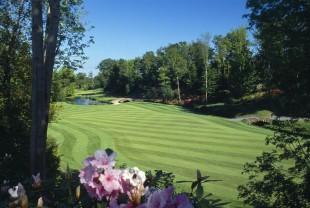 Druids Glen Golf